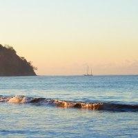A vida vem em ondas, como o mar