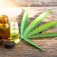 Cannabis medicinal: além do canabidiol